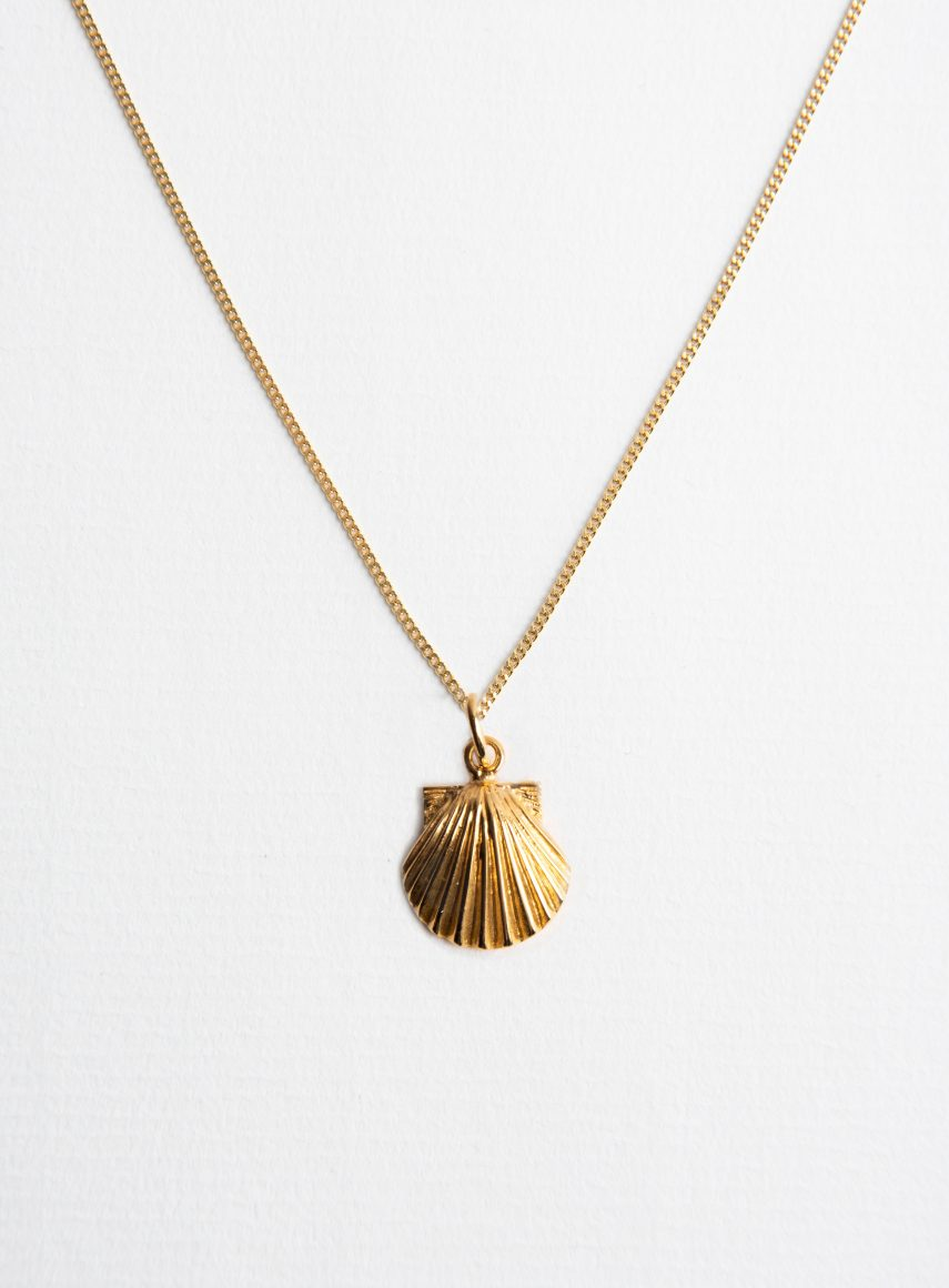 Seashell Gold on Plain Chain Gold